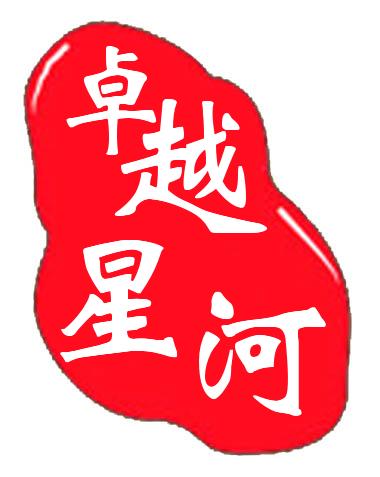 卓越星河数码专营店 的logo