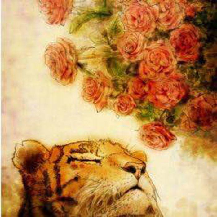 虎嗅蔷薇园