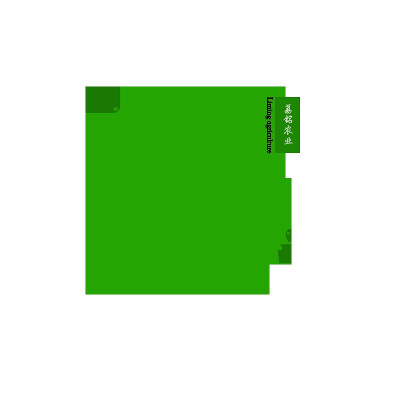 荔铭食品专营店
