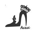 acesc艾斯臣旗舰店
